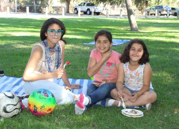 Annual Summer Picnic in the Park