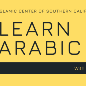 Learn Arabic with Dr. Amal Sakr Elhoseiny