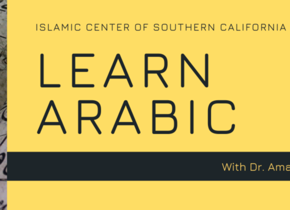Learn Arabic with Dr. Amal Sakr Elhoseiny